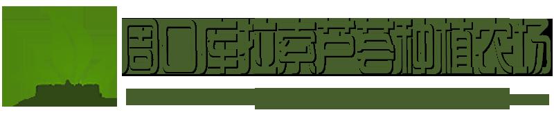 周口库拉索芦荟种植农场